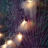 16 LED Eclairage de Noël Blanches Chaudes avec Plumes. Guirlandes Lumineuse Alimentée par Batterie pour Noël