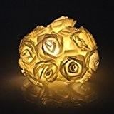 20 LED À Piles Fleur Rose Lampe Conte De Fée Marriage Jardin Fête Décoration De Noël Guirlande Lumineuse - Blanc ...
