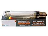 ampoule HPS Dual électro 600W