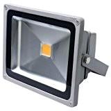 Auralum® 50W IP65 LED Projecteur Lumière IP65 Blanc chaud 2800-3200K 5400Lumen
