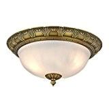 Lampes Led Luminaire Floureon Floureon Led OyvmnN80w