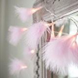 Guirlande Lumineuse d'Intérieur 24 Plumes Roses avec LED Blanc Chaud par Lights4fun