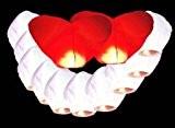 Lot de 12 Lanternes Blanches dont 2 Coeurs chinoise celestes volantes biodégradable pour fêtes , moments romantiques et magiques
